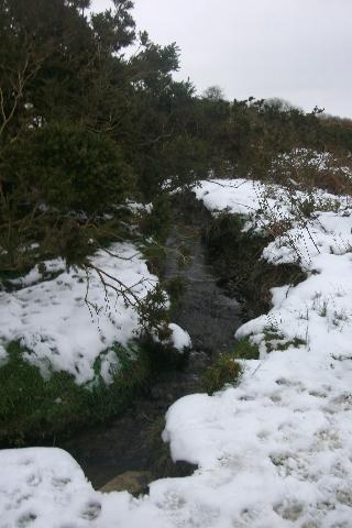 Cae Non in Snow 16
