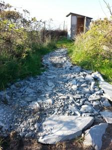 Stone Pathway 02