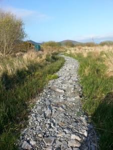 Stone Pathway 01